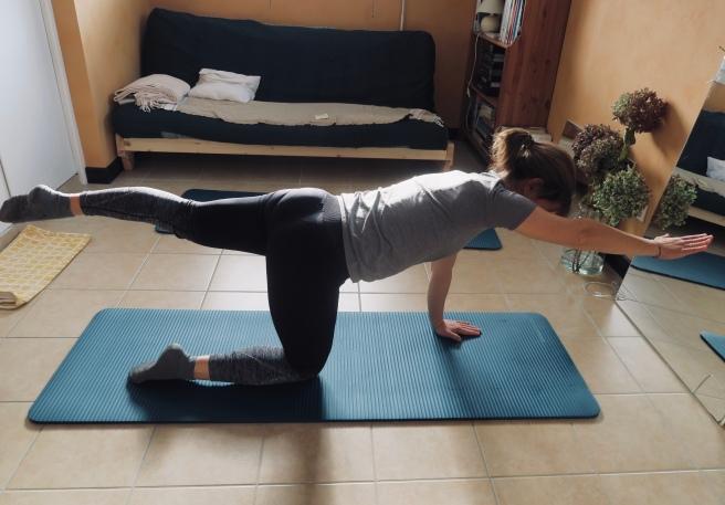 Posture swimming 4 pattes